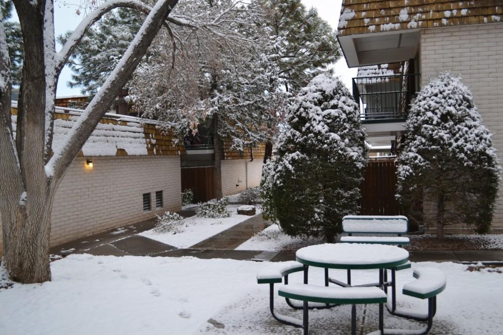 2015-02-27 snow 2