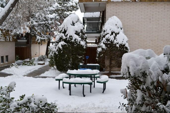 2015-02-28 snow 1