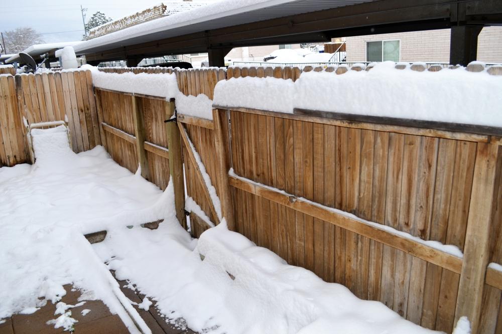 2015-02-28 snow 6