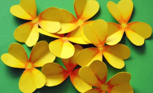paper flower Goldclover