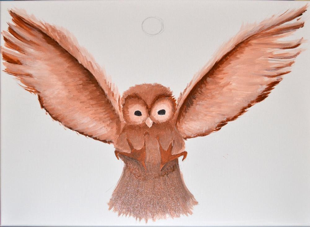 Owl Phoenix - day 1