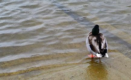 Lake Cumberland 6b
