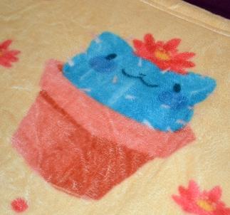Cat-ctus blanket