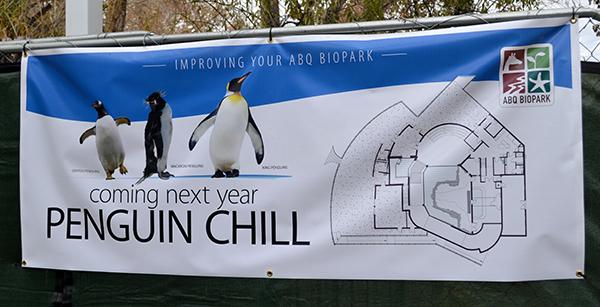 construction-penguins-1