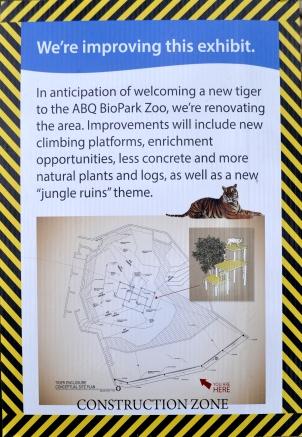 construction-tiger-2